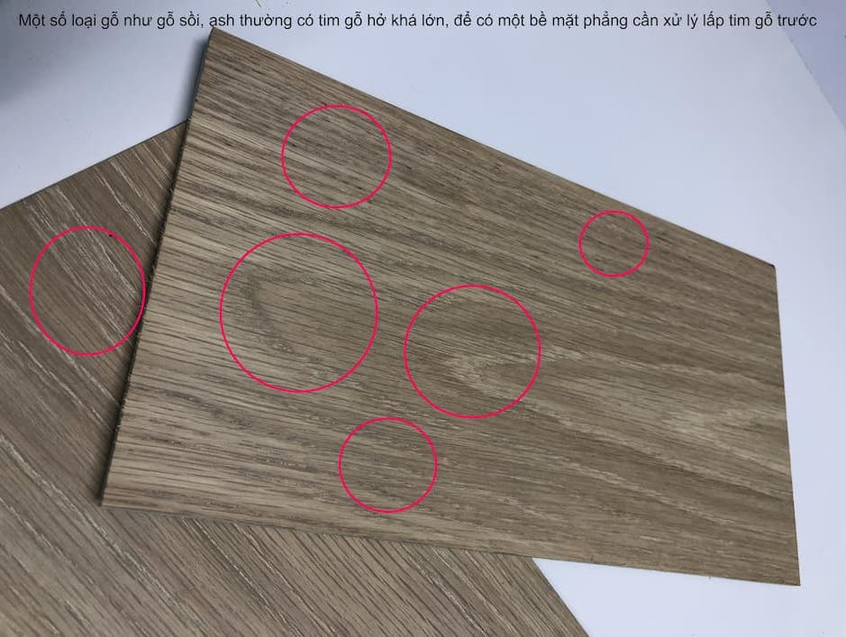 Gỗ sồi có tim gỗ lớn, cần xử lý trước sơn lót và sơn phủ bóng